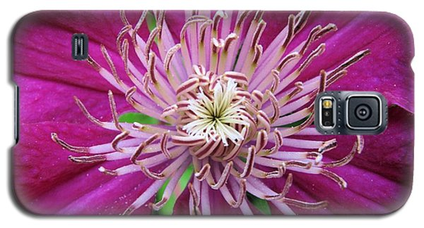 Clematis Heart Two Galaxy S5 Case
