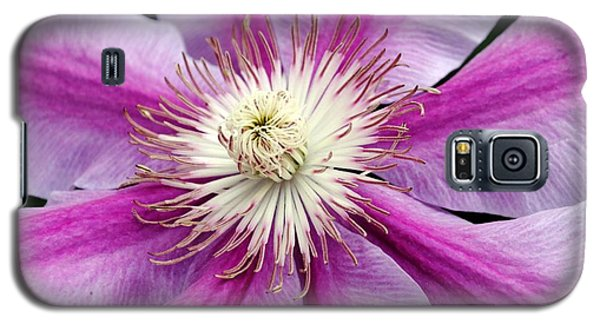 Galaxy S5 Case featuring the photograph Clematis by Kelly Nowak