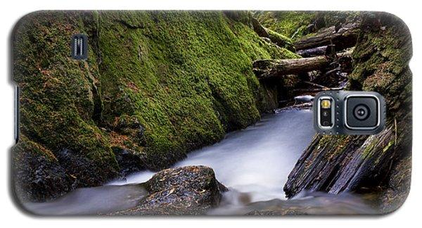 Cliff Gilker Park Galaxy S5 Case