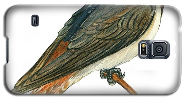 Cliff Swallow  Galaxy S5 Case by Anonymous