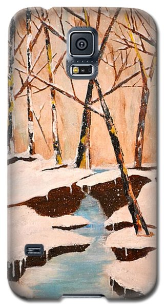 Cliffy Creek Galaxy S5 Case