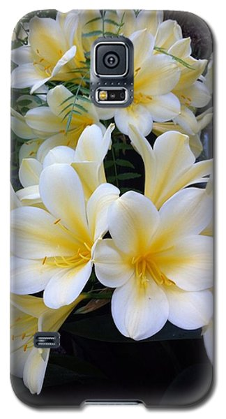 Clivia Galaxy S5 Case by John Wartman