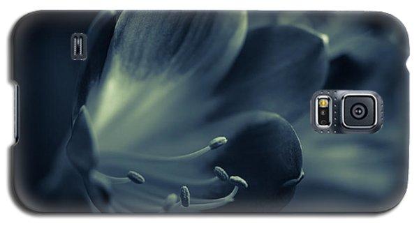 Clivia Miniata II Galaxy S5 Case