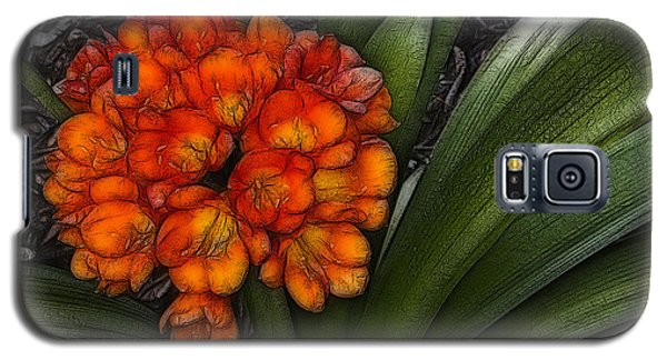 Clivia Galaxy S5 Case