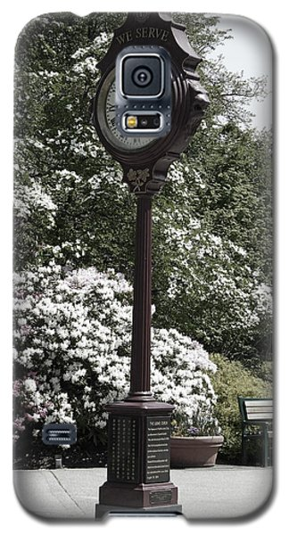Galaxy S5 Case featuring the photograph Clock In Park Muted by Laurie Tsemak