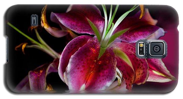 Clorella Galaxy S5 Case by Angelika Drake