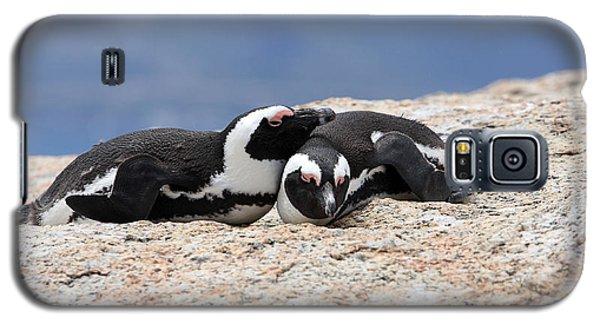 Close Bonds, African Penguin Galaxy S5 Case