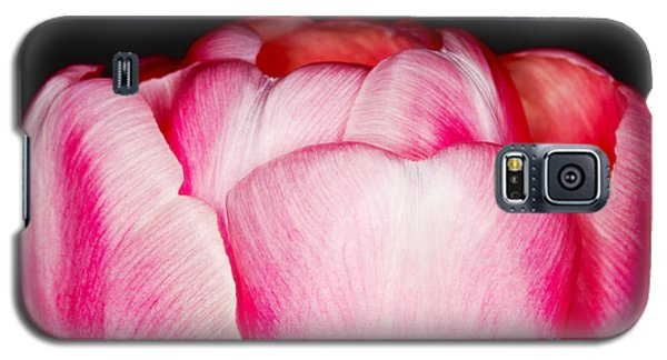 Close-up Of A Pink Tulip Galaxy S5 Case by Nick  Biemans
