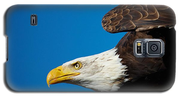 Close-up Of An American Bald Eagle In Flight Galaxy S5 Case