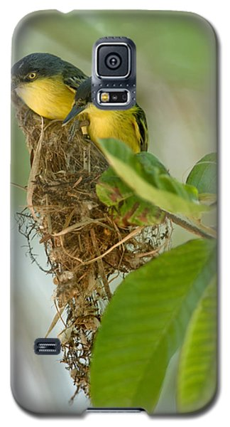 Close-up Of Two Common Tody-flycatchers Galaxy S5 Case