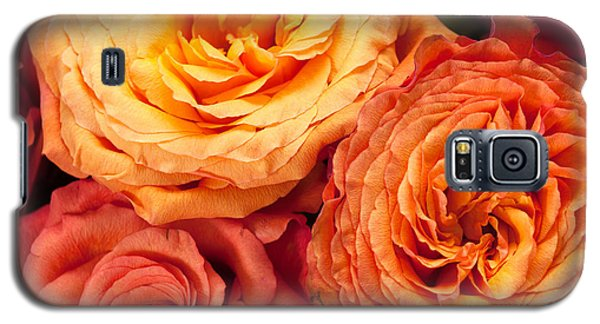 Close Up View Of Pink Orange Yellow Hybrid Tea Roses Galaxy S5 Case