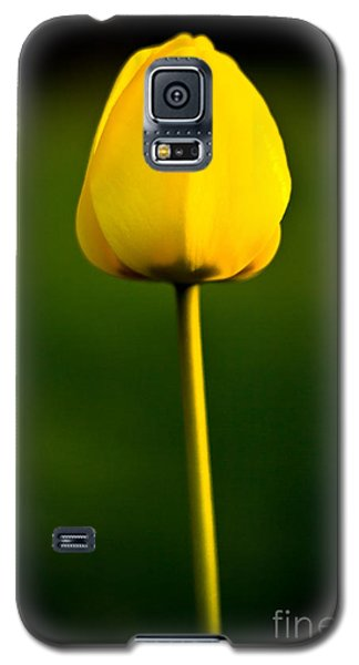 Galaxy S5 Case featuring the photograph Closed Yellow Flower by John Wadleigh