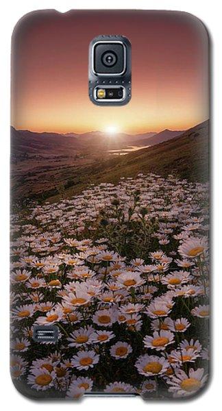Daisy Galaxy S5 Case - Closer To The Sun by Sergio Abevilla