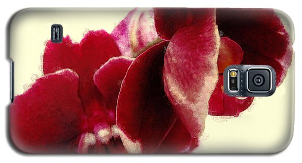 Closeup Of Flowering Burgundy Orchid Galaxy S5 Case