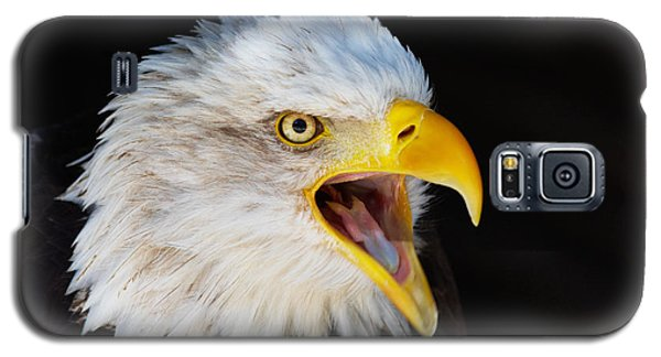 Galaxy S5 Case featuring the photograph Closeup Portrait Of A Screaming American Bald Eagle by Nick  Biemans
