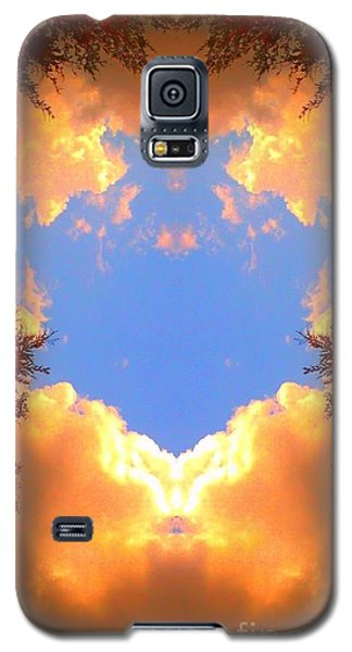 Clouds Of Gold Galaxy S5 Case by Karen Newell