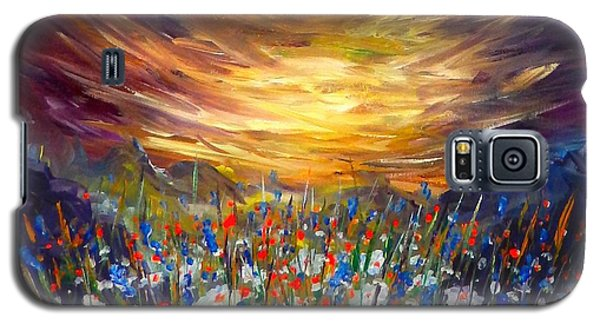 Galaxy S5 Case featuring the painting Cloudy Sunset In Valley by Lilia D