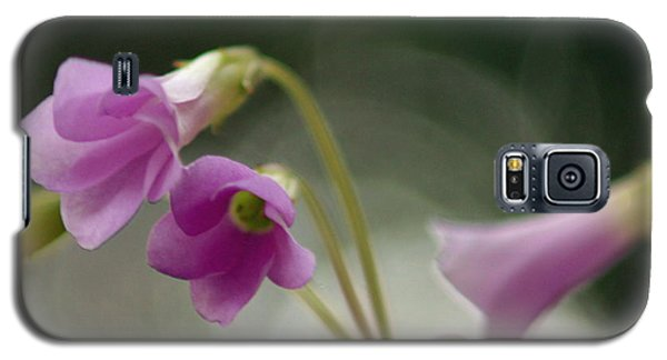 Galaxy S5 Case featuring the photograph Clover Bells by Greg Allore