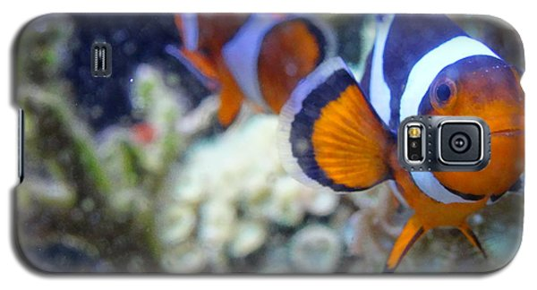 Clown Fish Couple Galaxy S5 Case