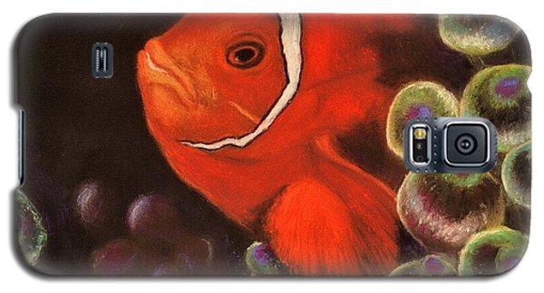 Clown Fish In Hiding  Pastel Galaxy S5 Case