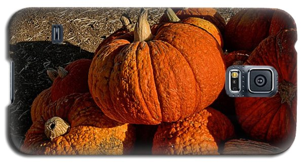 Galaxy S5 Case featuring the photograph Knarly Pumpkin by Michael Gordon