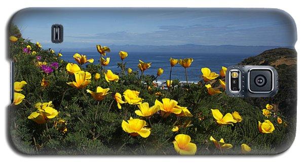 Coastal California Poppies Galaxy S5 Case
