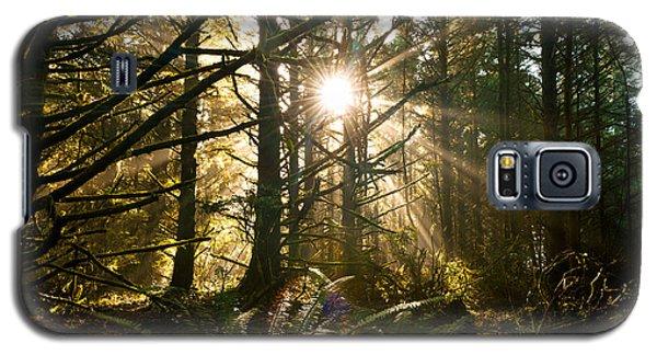Coastal Forest Galaxy S5 Case