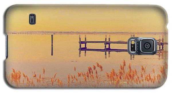 Coastal Winter Galaxy S5 Case by Karol Livote