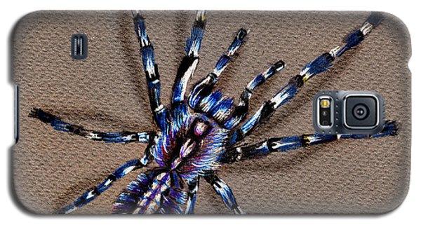 Cobalt Blue Tarantula Galaxy S5 Case