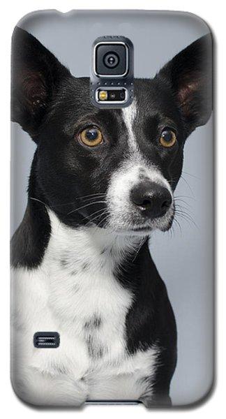 Cochiti 1 Galaxy S5 Case