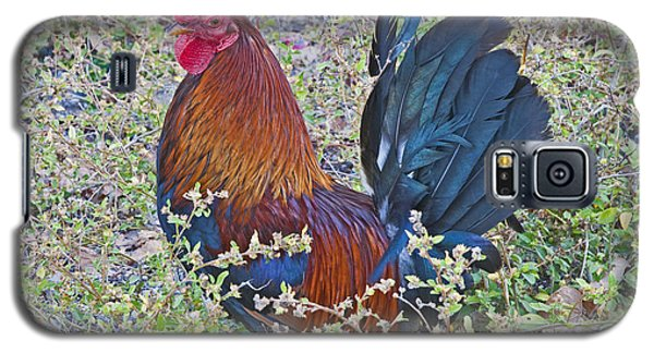 Cock-a-doodle-do Galaxy S5 Case