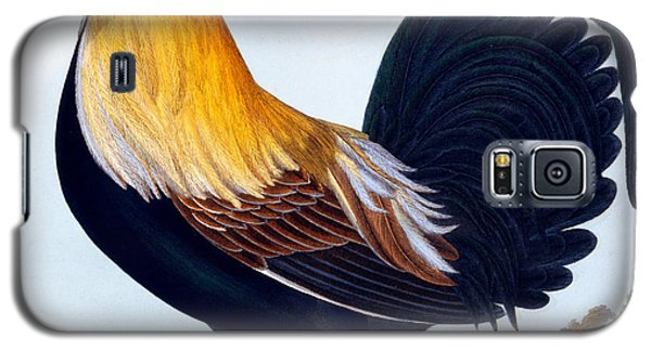 Cock Galaxy S5 Case by CLE Perrott