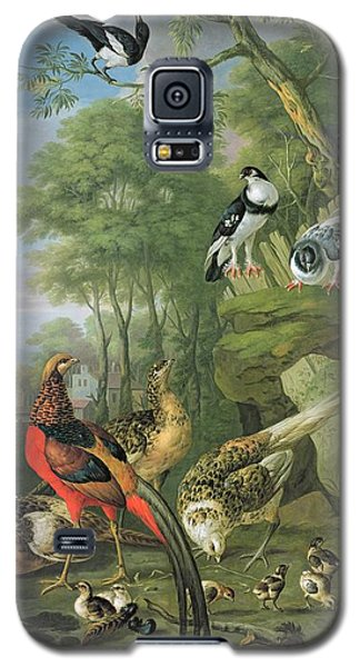 Cock Pheasant Hen Pheasant And Chicks And Other Birds In A Classical Landscape Galaxy S5 Case