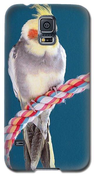 Cockatiel Galaxy S5 Case