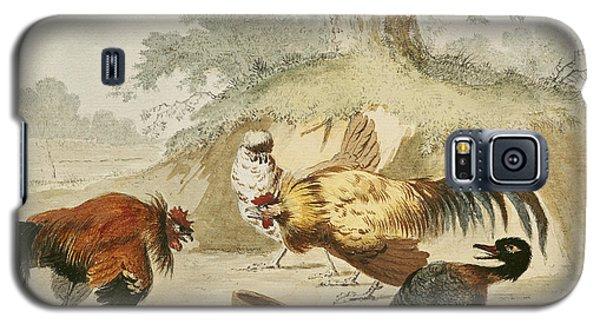Cocks Fighting Galaxy S5 Case by Melchior de Hondecoeter