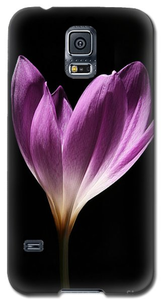 Colchicum #3 Galaxy S5 Case