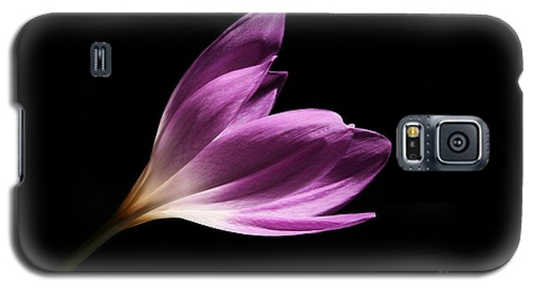 Galaxy S5 Case featuring the photograph Colchicum  by Judy Whitton