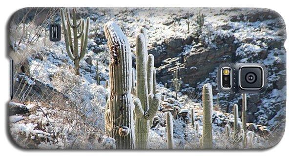 Cold Saguaros Galaxy S5 Case by David S Reynolds