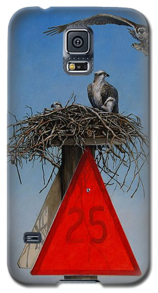 Osprey Galaxy S5 Case - Collaborative Effort by Dreyer Wildlife Print Collections