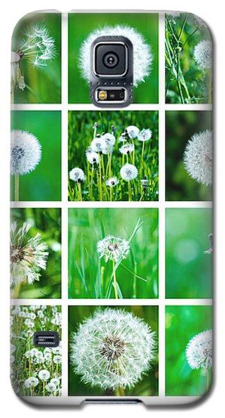Collage June - Featured 3 Galaxy S5 Case by Alexander Senin