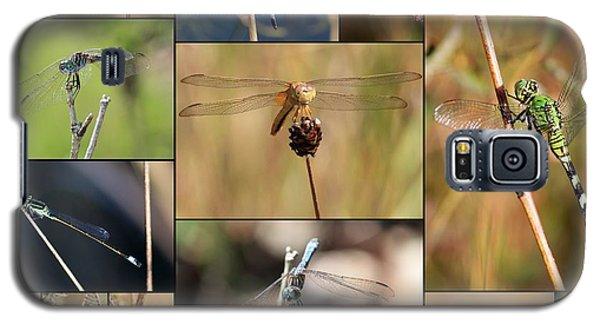 Collage Marsh Life Galaxy S5 Case