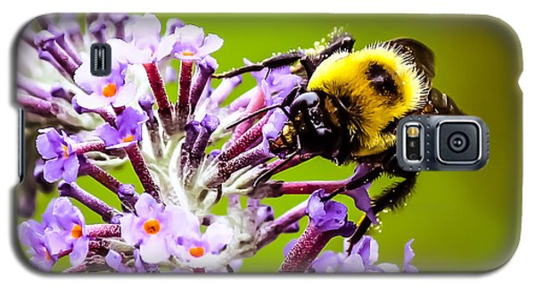 Collecting Pollen Galaxy S5 Case
