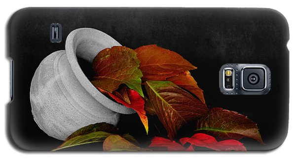 Galaxy S5 Case featuring the photograph Collecting The Autumn Colors by Marwan Khoury