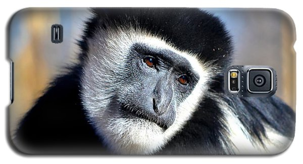 Galaxy S5 Case featuring the photograph Colobus Contemplation by Deena Stoddard