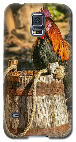 Coloful Rooster 2 Galaxy S5 Case
