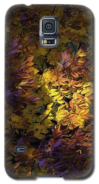 Color Calls Galaxy S5 Case