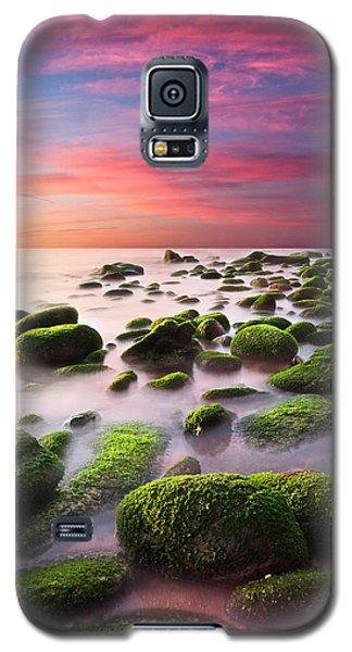 Color Harmony Galaxy S5 Case by Jorge Maia