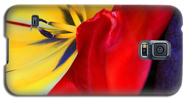 Color Kiss Galaxy S5 Case by Jeanette French