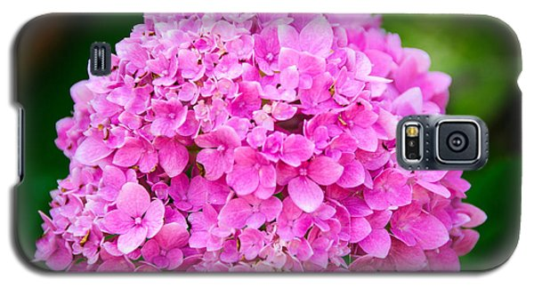 Color Of The Year 2014 Pink Hydrangea Galaxy S5 Case