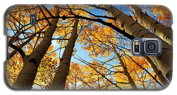 Colorado Autumn Galaxy S5 Case
